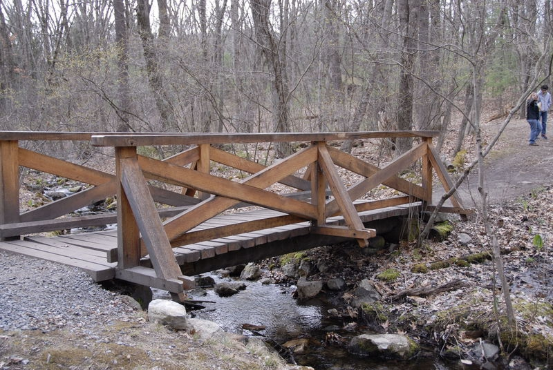 Bridge in the Reservation