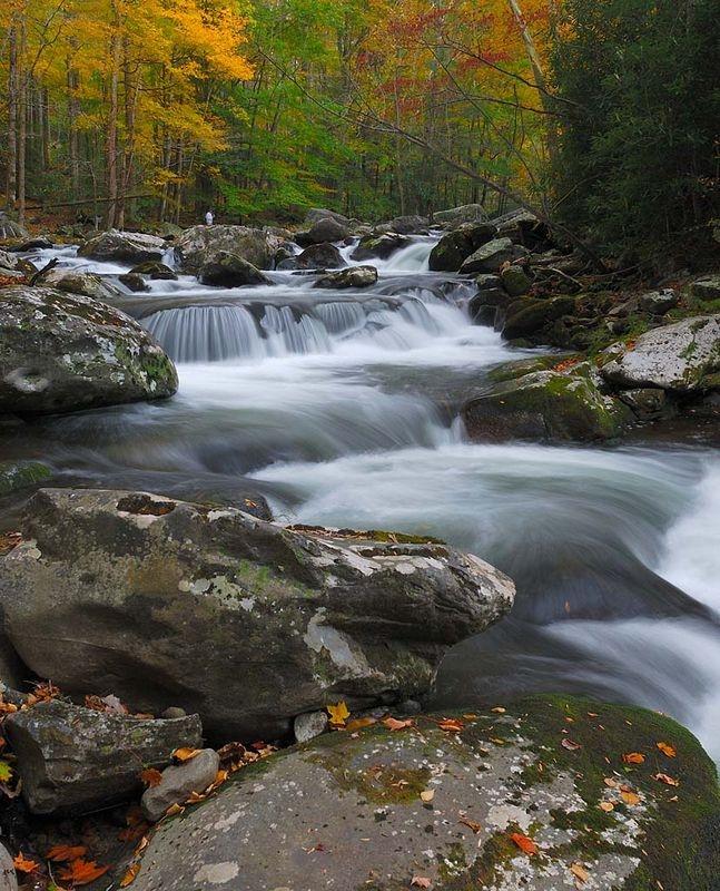 Cascade Tremont 2
