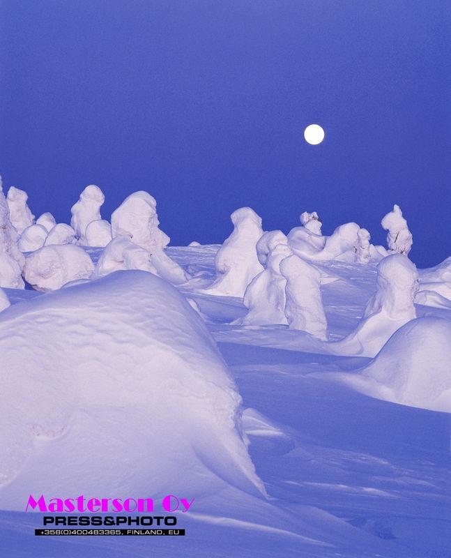 Arctic winter -Heavy snow in moonlight