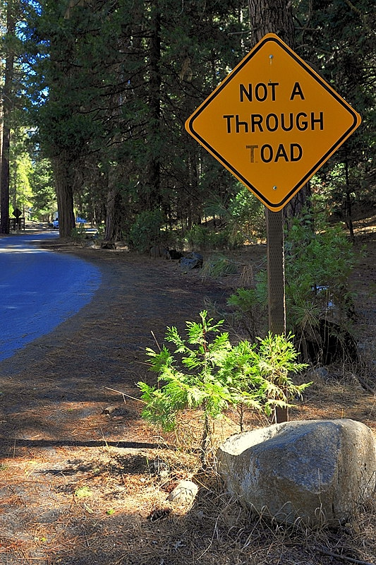 Not a Through Toad - er' Road
