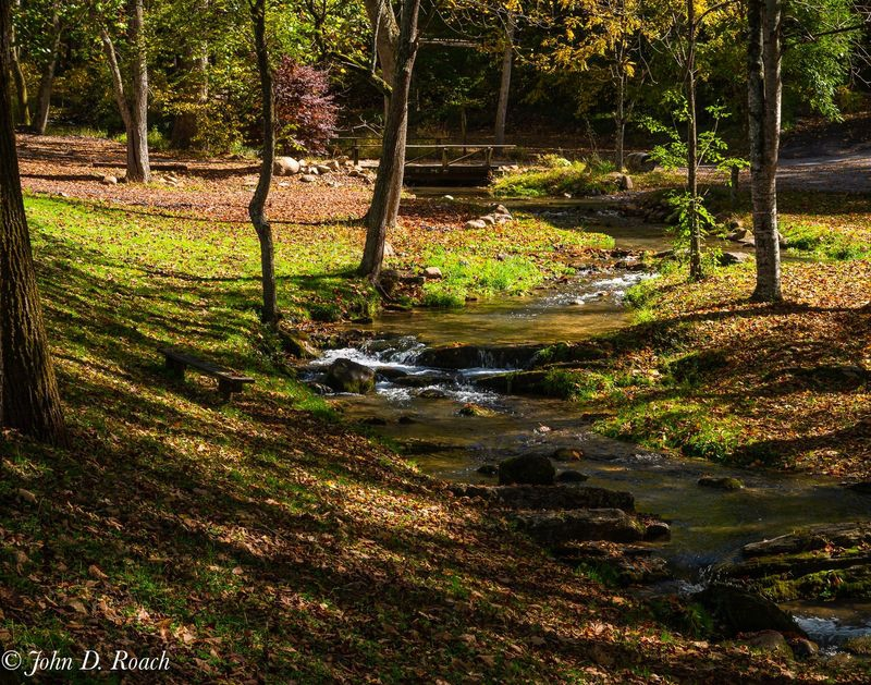 Along the Creek in Autumn