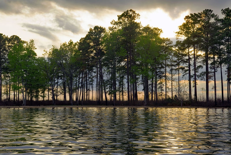 Reflections on Lake Murray, S.C.