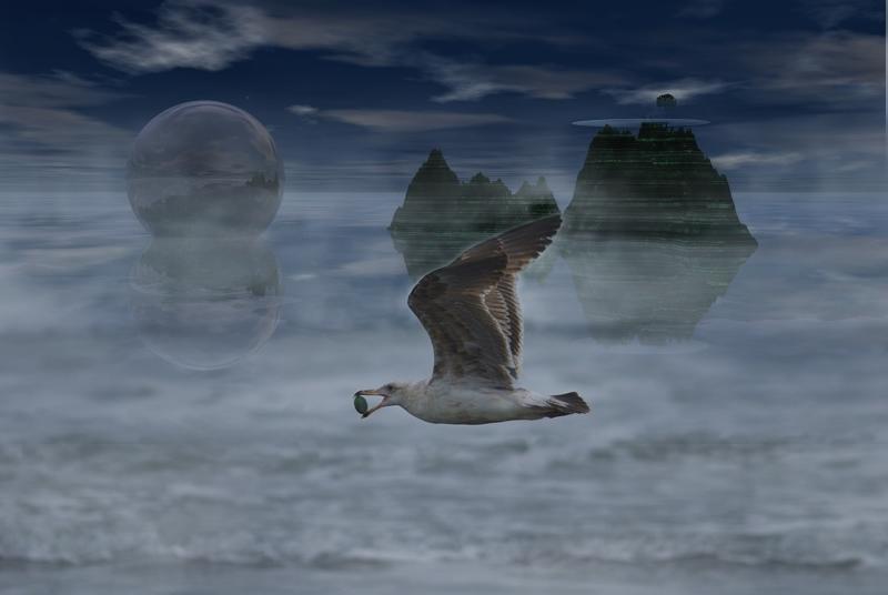 Gull Between Worlds