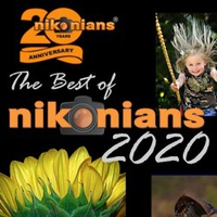 Webinar Best of Nikonians 2020