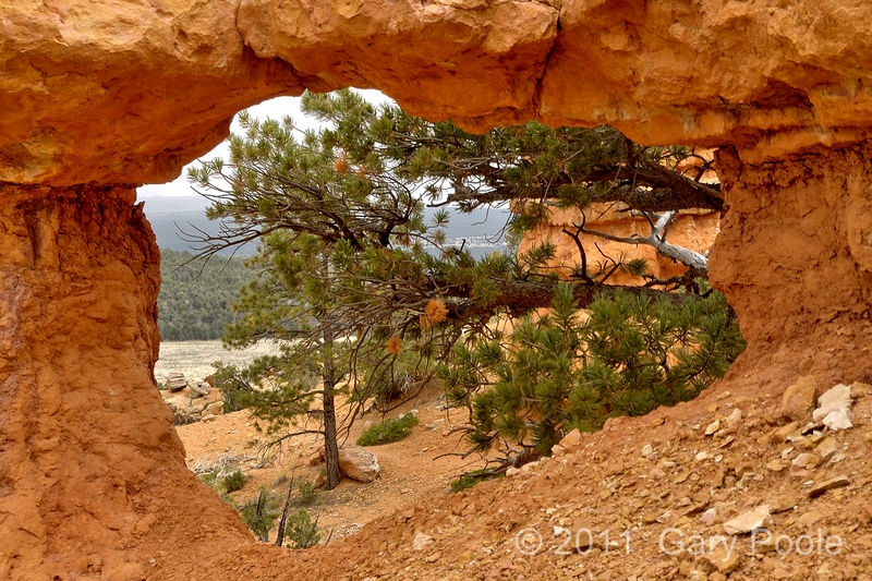 Arch on Arches Trail