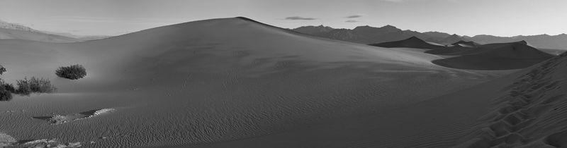 Morning Sand Dune Panorama