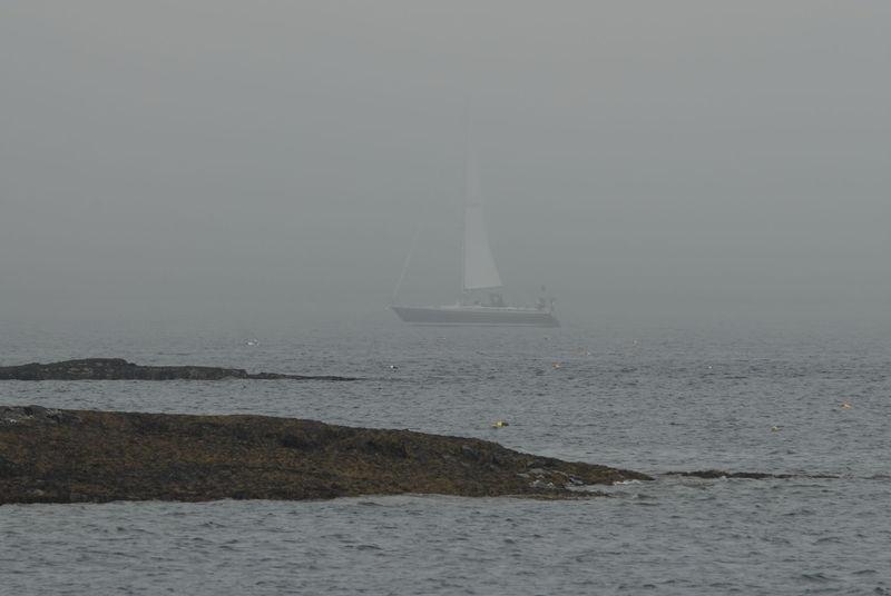 Sailboat in the Mist - Bar Harbor, Maine