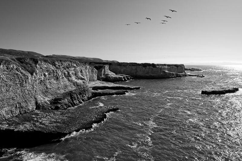 California Coast Lucky 7