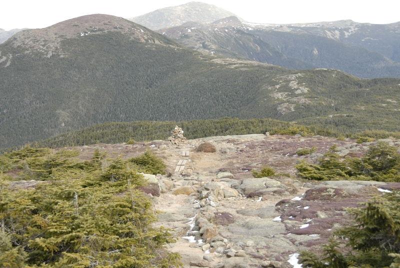 Alpine Zone, Mount Pierce - White Mountains, New Hampshire