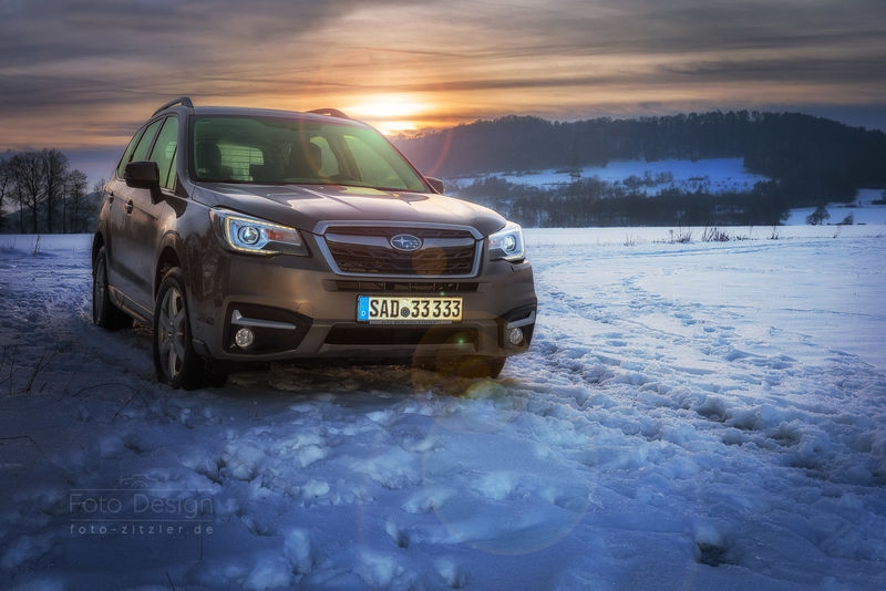 forester sunset