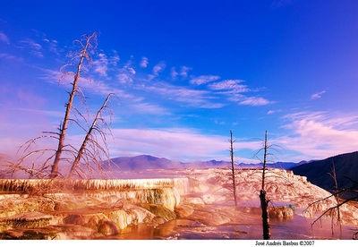 Upper Terrace - Yellowstone