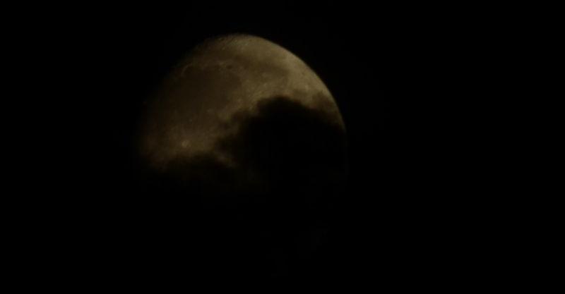 Shy Moon