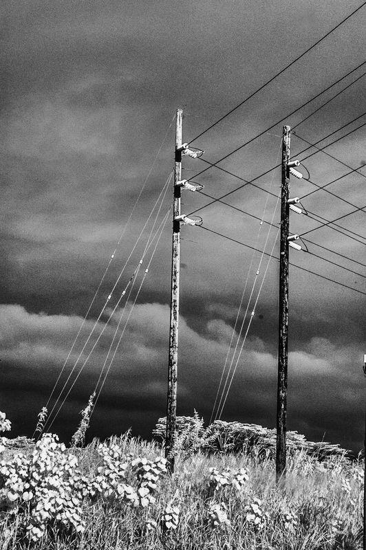 POWER_LINES_1298