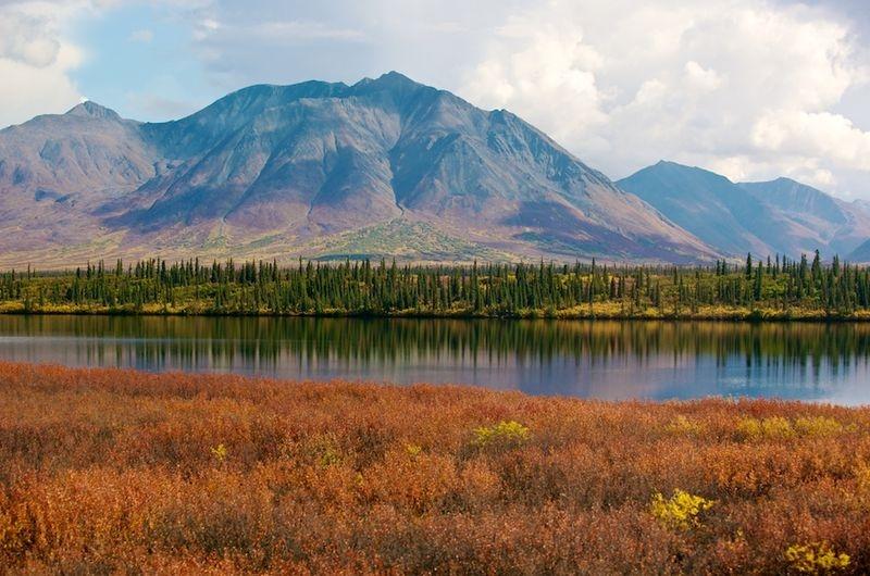 Alaska range from the train
