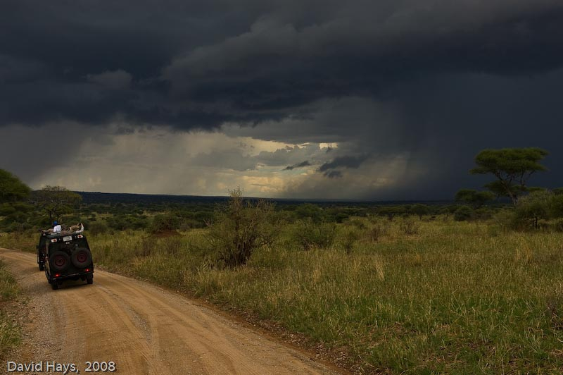 Storm brewing over Tangire NP.