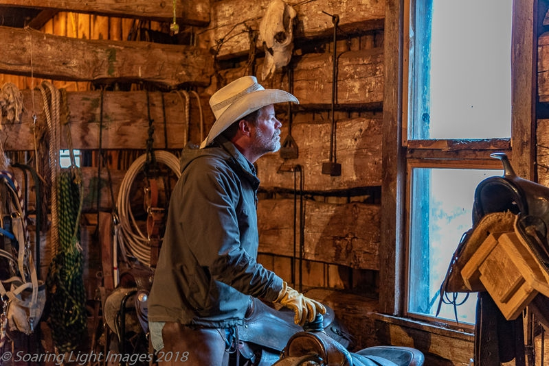 Gazing At Dawn Barn Window Light