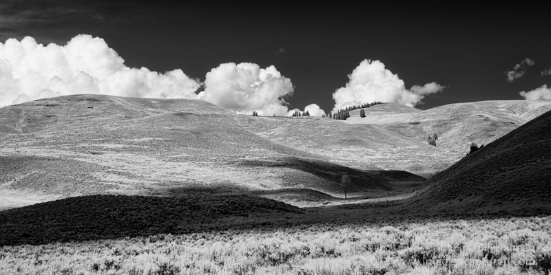 Lamar Valley in Yellowstone Nat'l Park (2)