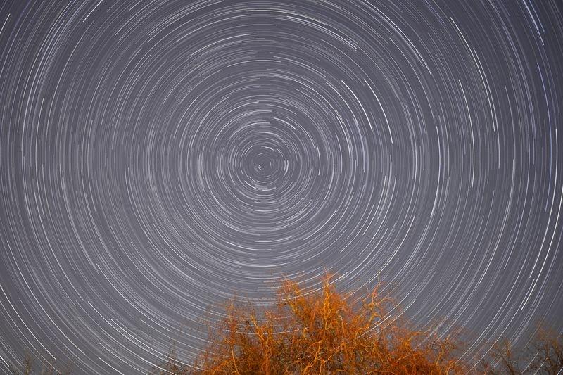 Backyard star trails