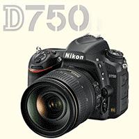 Nikon D750 Initial Impressions - User Review