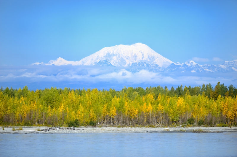 View from Train to Denali