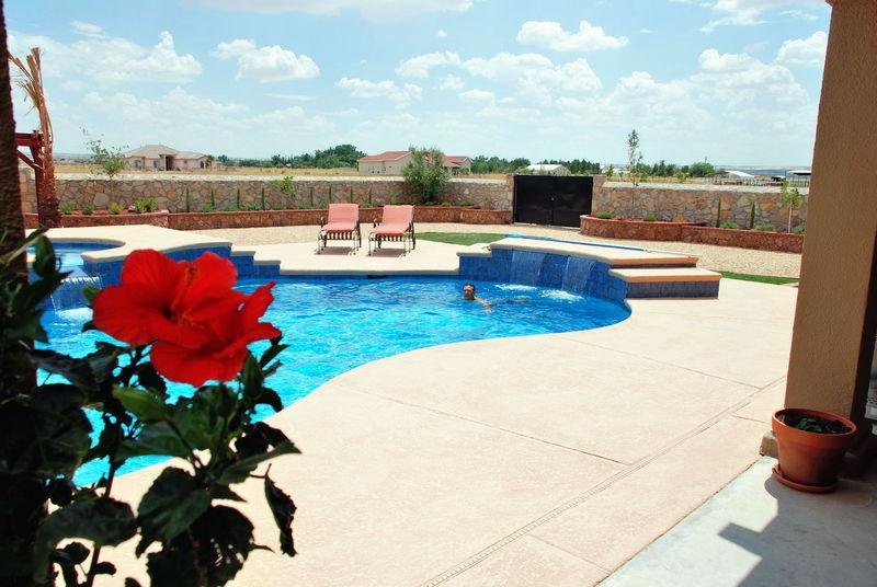 Hibuscus flower & pool