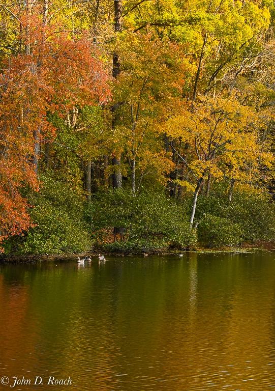 Fall Color at Echo Lake-3