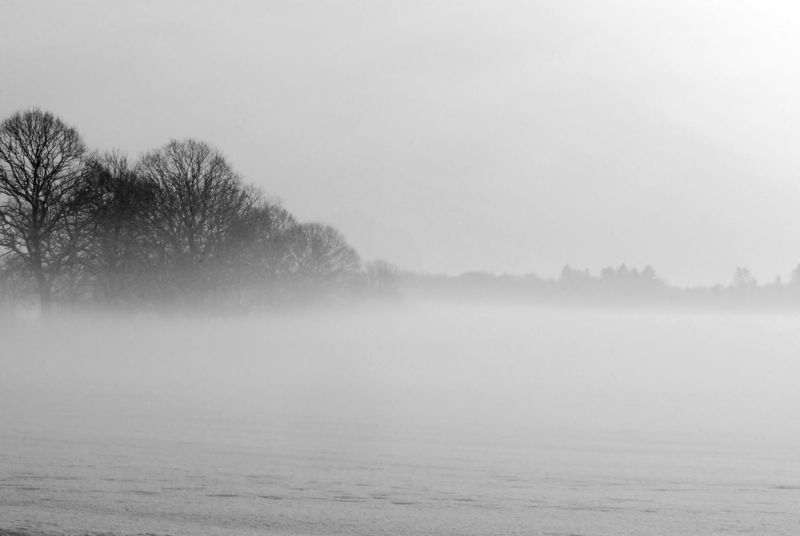 Fog and frost over the field