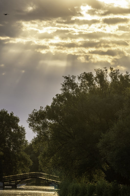 Stratford, Ontario Sunrise