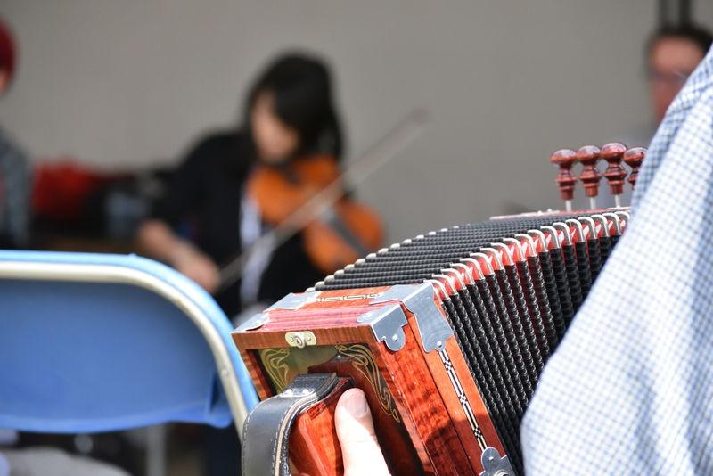 Accordion and fiddler in Festival du bois 2019