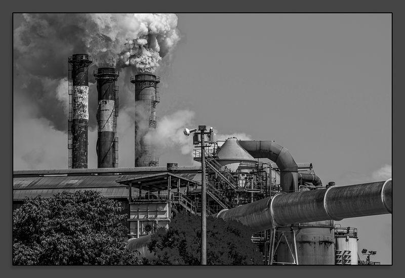 Victoria Sugar Mill