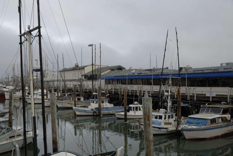 Maritime – San Francisco Wharf