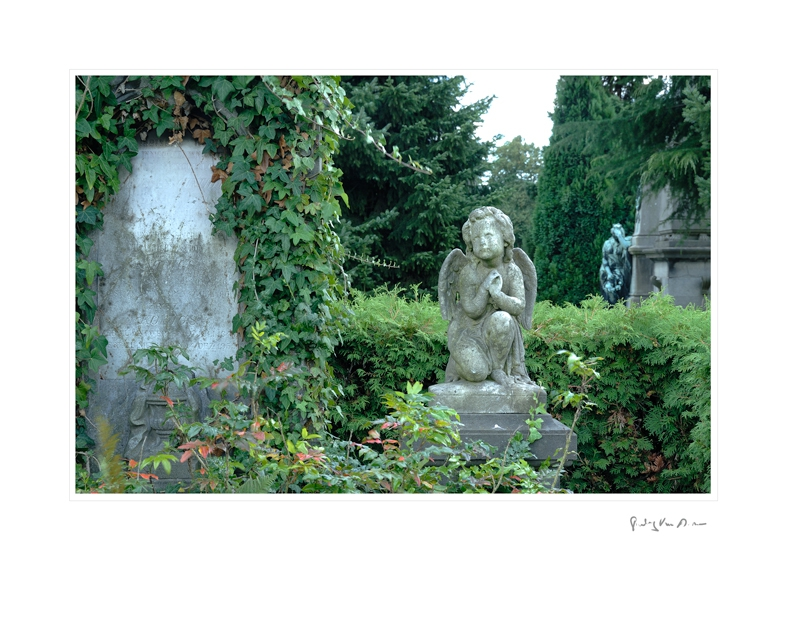 Graveyard_2