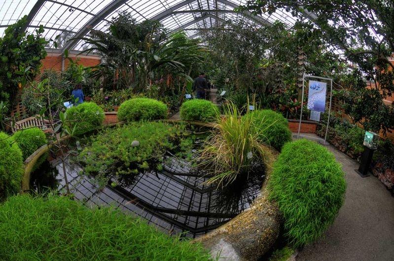 Matthie Botanical Gardens - reflections