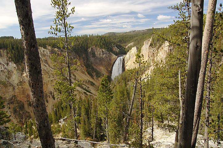 Yellowstone Falls 5