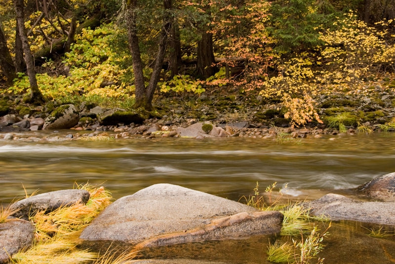 Merced River, Wawona - Yosemite