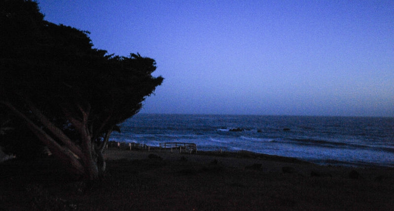 NIGHT_ON_THE_PACIFIC_SHORE-1