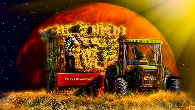 Crazy Hot Harvest