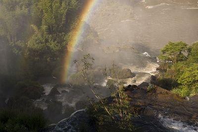 Rainbow & Mist
