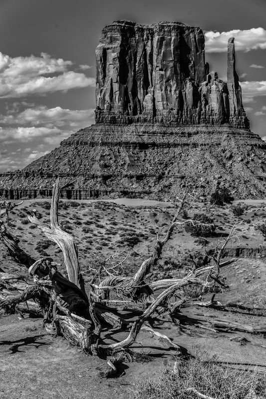 Monument Valley-Mid Afternoon