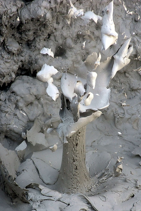Thwat - Yellowstone Sulfur Pots