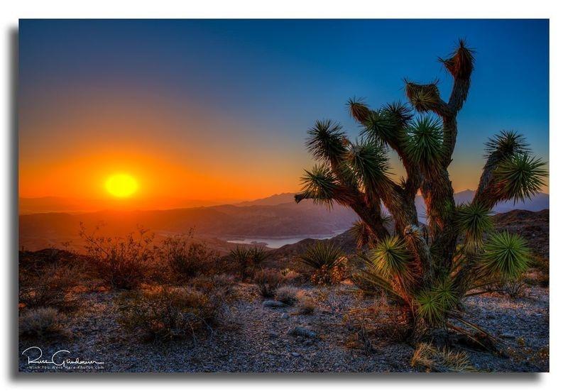 Meadview Arizona