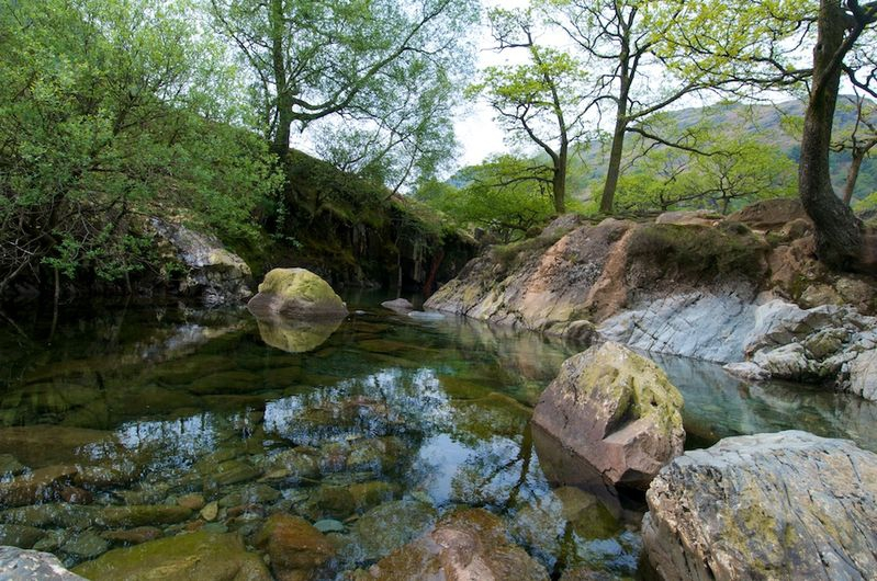 A Tranquil Stream