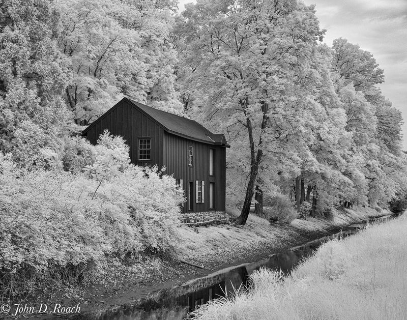 Along the Delaware Canal