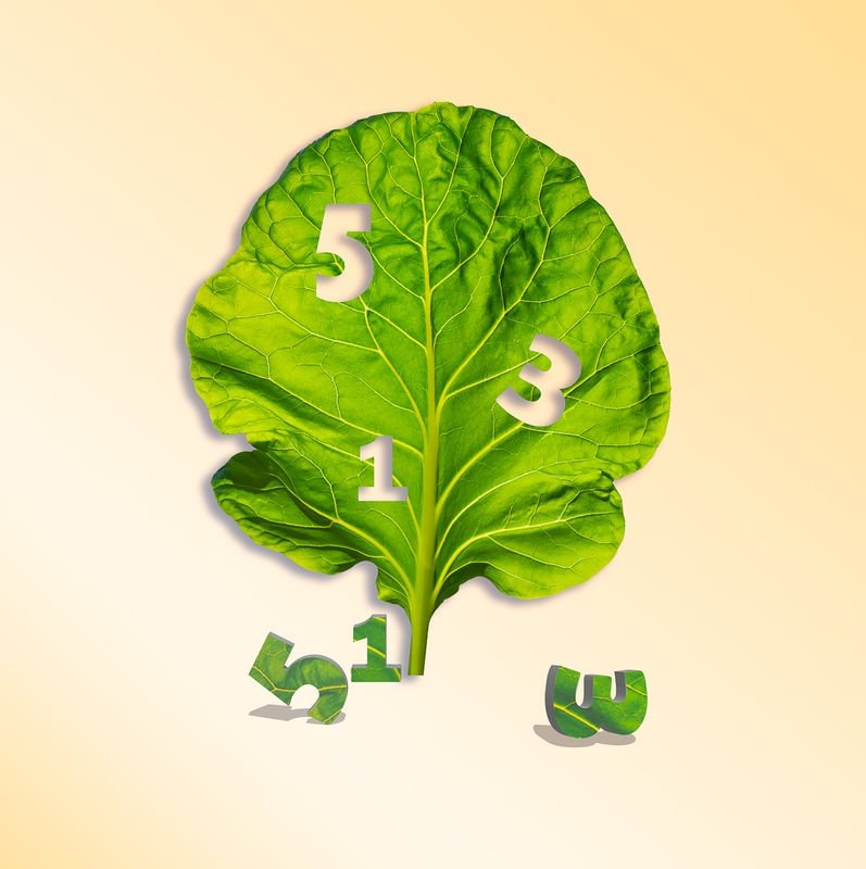Lettuce and Numbers