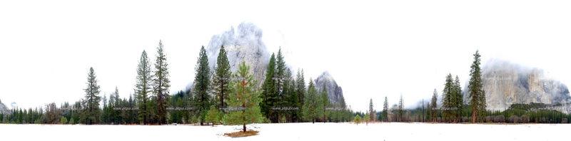 Pano at El Capitan Meadow
