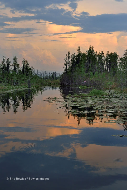 Sunset in the Okefenokee