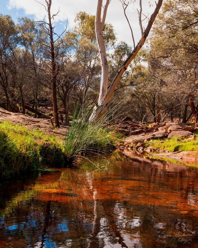 Outback light and majesty
