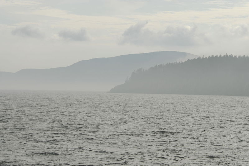 Misty Harbor - Bar Harbor, Maine