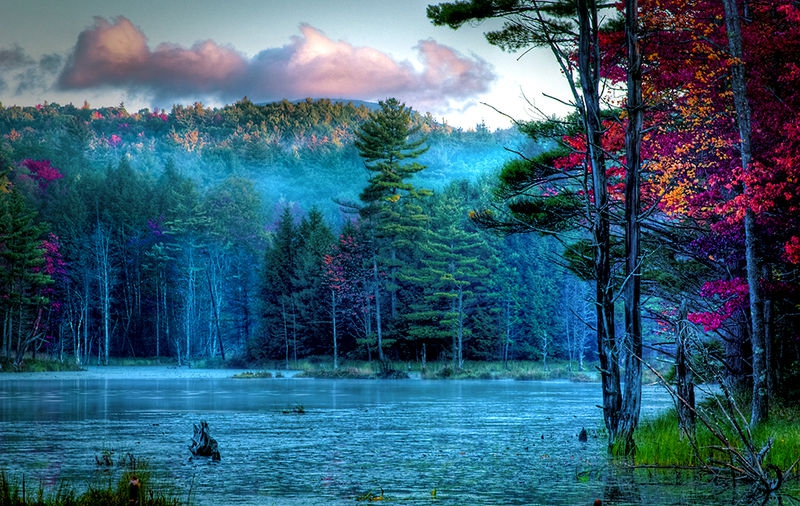 Sunrise on Meadow Pond