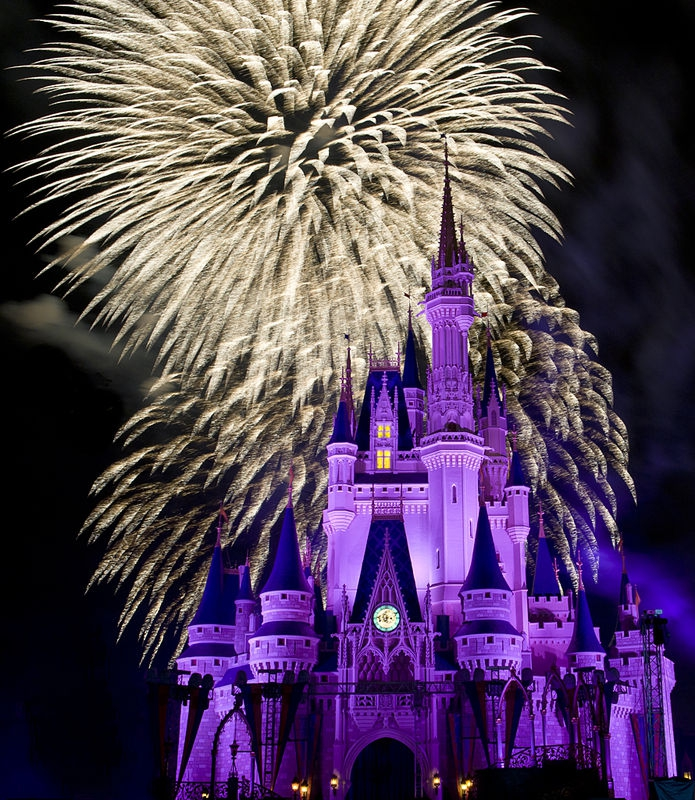 Disney's Castle